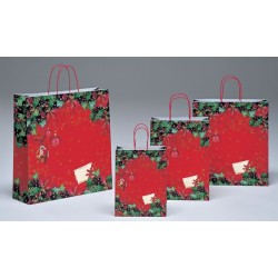 Bolsas de papel 22+10x29 Stella di Natale
